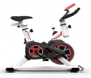 Indoor Recumbent Exercise Bike Folding Bike Home Gym Reebok Exercise Bike Fitness Equipment Sport Cycling Bike for Weight Loss - Black Spain